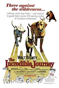 The-Incredible-Journey-1963