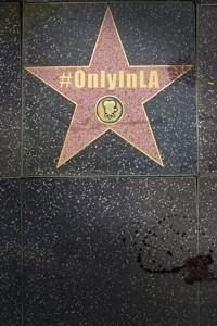 Only-In-LA-2012